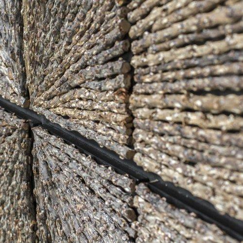 Bursting Forth Wood Wall Decor