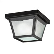 Outdoor Miscellaneous Collection Outdoor Flush Mt 1Lt BK