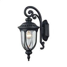 Derry Hill 1-Light Outdoor Wall Lamp in Matte Black