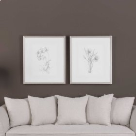Botanical Sketches Framed Prints, S/