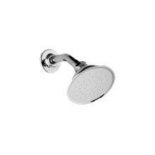 Elegant Showerhead with Shower Arm