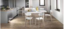 Wooden and polypropylene stool
