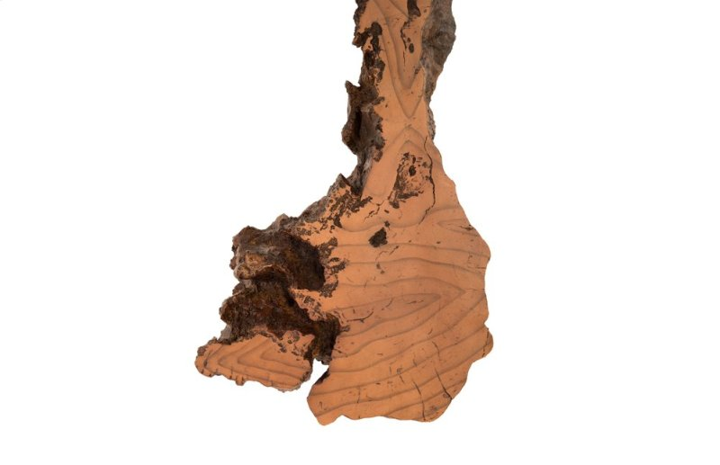 PH83681 in by Phillips Collection in Calgary, AB - Burled Root Wall