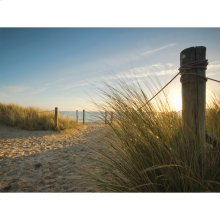 Beach Walk Outdoor Canvas Art