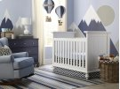 Wakefield Colors 3 in 1 Convertible Crib Product Image