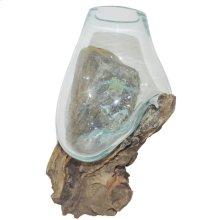 Glass Vessel/Teak Root Stand