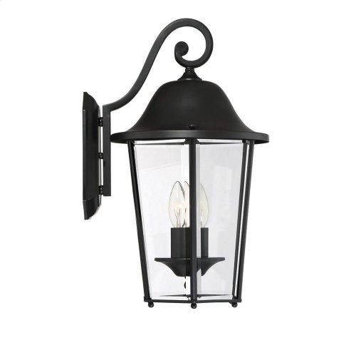 Truscott 2 Light Wall Lantern