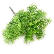 Thyme Herb Stem