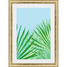Pop Palm