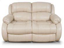 Litton Double Reclining Loveseat 2013L
