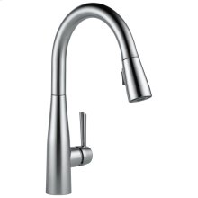 Arctic Stainless Single Handle Pull-Down Kitchen Faucet