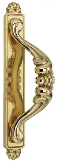 Door Pull with Backplate - Solid Brass in US3 (Polished Brass, Lacquered)