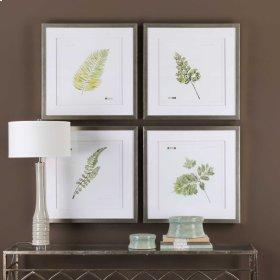Watercolor Leaf Study Framed Prints,