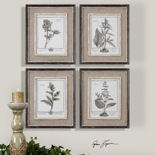 Casual Grey Study Framed Prints, S/4