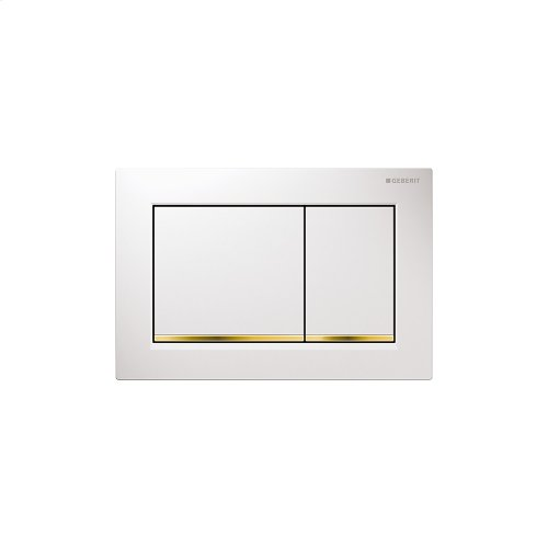 Omega30 Dual-flush plates for Omega series in-wall toilet systems White with polished gold accent Finish