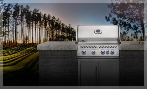 Built-In Prestige PRO 500 with Infrared Rear Burner
