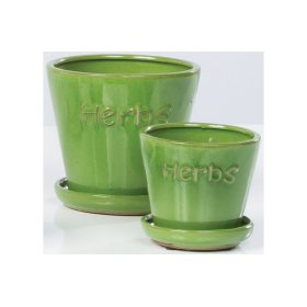 Green Herbs Petits Pots with Attached Saucer - Set of 2