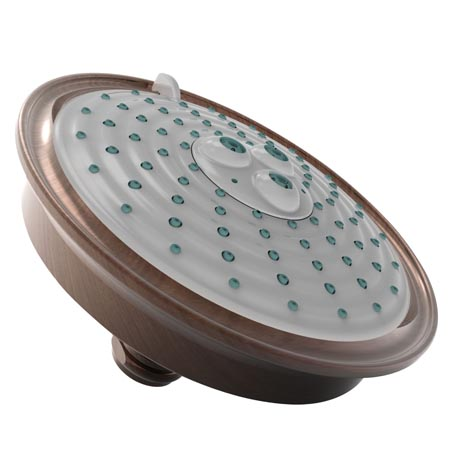 Venetian-Bronze Multifunction Showerhead