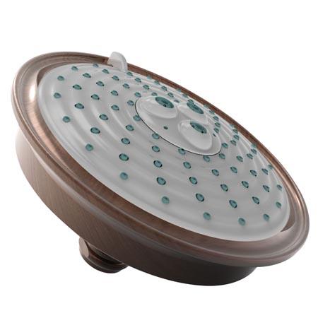 Venetian-Bronze Multifunction Showerhead