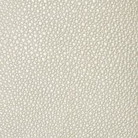 Shagreen Oyster Product Image