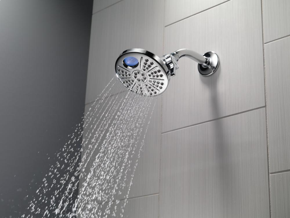 Additional Chrome Temp 2 O ® 6-Setting Shower Head