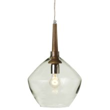 Long Neck Pendant with Round Glass. 40W Max. Plug-in with Hard Wire Kit Included.