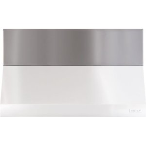 """48"""" Outdoor Pro Wall Hood - 6"""" Duct Cover"""