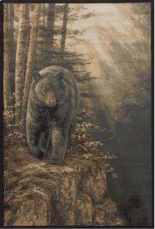 Ww Lic Des Genesis Rm Rocky Blk Bear Na Rugs