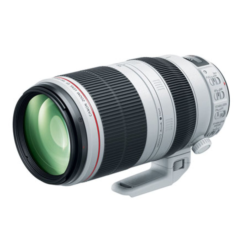 Canon EF 100-400mm F4.5-5.6L IS II USM Telephoto Zoom