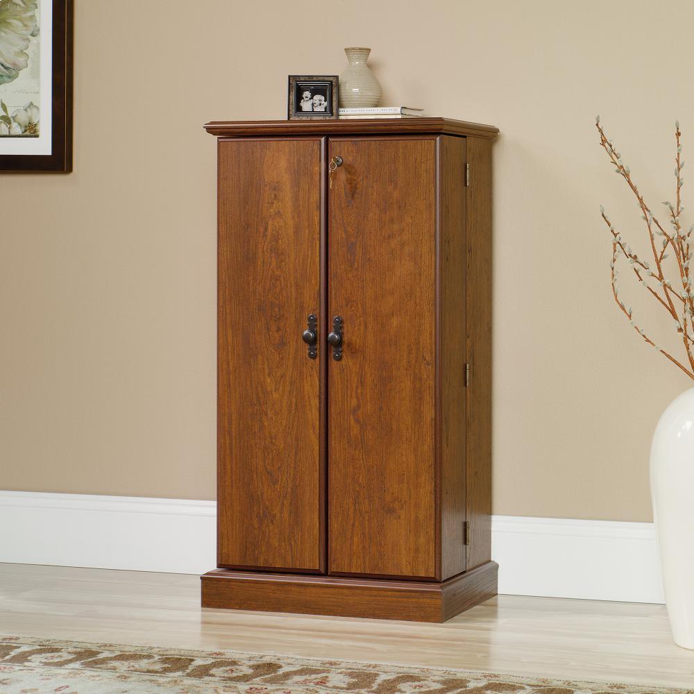 Exceptionnel Multimedia Storage Cabinet