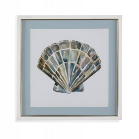 Aquarelle Shells IV