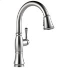 Arctic Stainless Single Handle Pull-Down Kitchen Faucet with ShieldSpray ® Technology Product Image