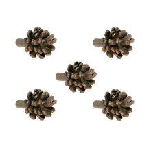 Pine Iron Drawer Knob- 5 Piece Set