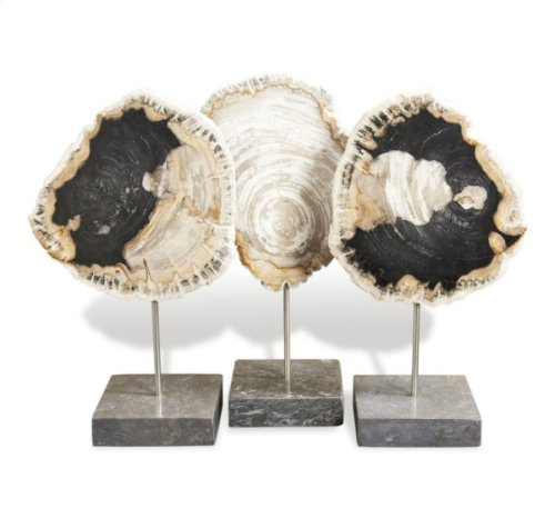 Petrified Wood Trio