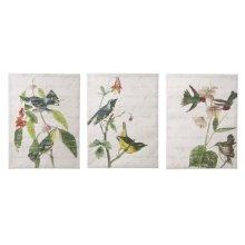 Birds with Script Wall Art (3 asstd).