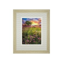 Summer Meadows By Celebrate Life Gallery