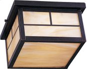 Coldwater 2-Light Outdoor Ceiling Mount