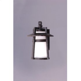 Calistoga 1-Light Outdoor Wall Lantern