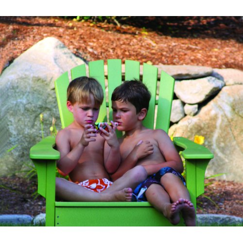 Adirondack Shellback Chair (018)