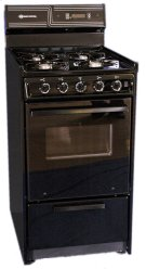 "20"" Free Standing Gas Range Product Image"