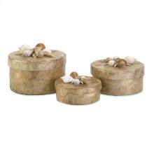 Sanibel Natural Shell Boxes - Set of 3