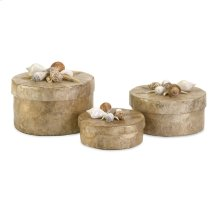 Sanibel Natural Shell Boxes - Set of 3