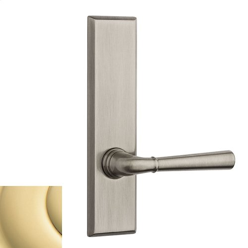 Polished Brass Traditional L027 Lever Screen Door