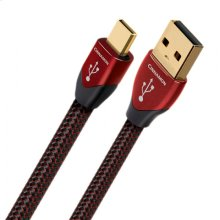 Audioquest Cinnamon USB to Micro USB Cable