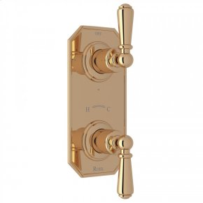 """Unlacquered Brass Perrin & Rowe Edwardian Trim For 1/2"""" Thermostatic/Diverter Control Rough Valve with Edwardian Metal Lever"""
