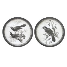 Black and White Bird Wall Decor - Ast 2