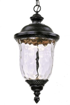 Carriage House LED Outdoor Hanging Lantern