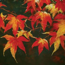 Feeling Of Autumn Printed Canvas Painting