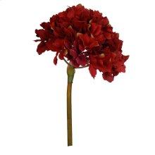 Hydrangea,Deep Red