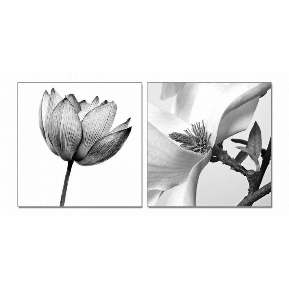 Modrest White Composition 2-Panel Photo On Canvas